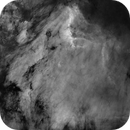 Pelikannebel IC5070 ohne Sterne,                                Caspar Schumann