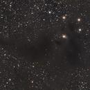 Barnard 228,                                Gary Imm