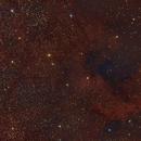 NGC7000,                                Davy HUBERT