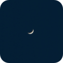 Venus During the Daytime,                                Zach Coldebella