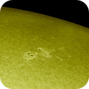 Sunspot 2769,                                Bruce Rohrlach
