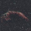 Eastern Veil Nebula,                                Cfreerksen