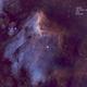 The Pelican Nebula,                                Timgilliland