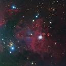NGC 1999 at DeepSkyWest,                                Jeff A Brown (pullaqua)