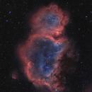 Soul (Embryo) Nebula in Bicolor with DSLR,                                Markus Bauer