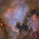 NGC 7000,                                Giuseppe Donatiello
