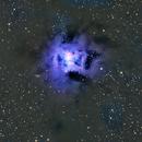 NGC 7023--Iris Nebula,                                  Bob J