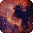 NGC7000 Golf von Mexiko,                                Kai