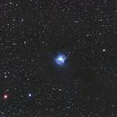 Iris Nebula (NGC 7023),                                Capelus
