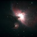 Orion Nebula,                                André Wiget