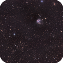 NGC 7129, NGC 7142,                                Kathy Walker