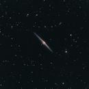 NGC 4565 (Needle Galaxy),                                Ofiuco