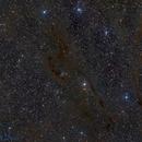 Barnard 7,                                Miles Zhou