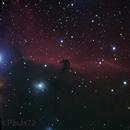 IC434 - Horsehead Nebula,                                Paul Surowiec