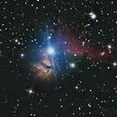 Nebulosa Cabeza de caballo,                                Wilmari