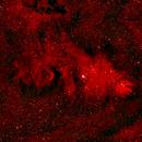 Ngc 2264 L_RHAGB,                                hadara16