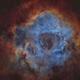 NGC 2237 starless,                                astromat89