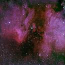 IC5070 ou Nebulosa do Pelicano,                                João Gabriel Fonseca Porto