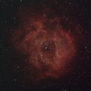 Rosette Nebula - new camera,                                AstroBros