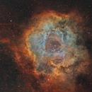 NGC 2237 - Caldwell 49,                                Idir Saci