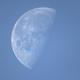 Daylight Moon,                                Massimiliano Vesc...