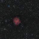 IC 5146 Cocoon Nebula,                                Gebhard Maurer