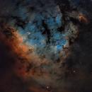 NGC 7822,                                Gary Imm