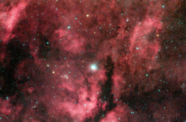 Ic1318 Sadr [gamma cigni] widefield complex,                                Michele Russo