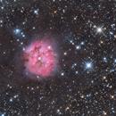Cocoon nebula,                                Michael