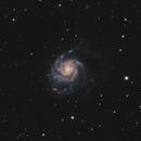 M101 Pinwheel Galaxy 20210413 26640s LHaGB 01.4.4,                                Allan Alaoui