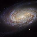 NGC 2903, a Bright Galaxy in Leo (2 panels),                                Ruben Barbosa
