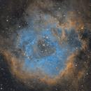 The Rosette Nebula,                                Antoine Grelin
