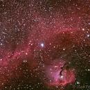 Seagull Nebula IC2177 in LRGB,                                TWFowler
