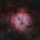 IC 1396 - BICOLOR HA + O3,                                Alberto Maria Casati