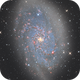 M33 revisited,                                -Amenophis-