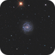 NGC3184 LRGB,                                Christopher Gomez