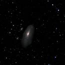 NGC7331,                                James Screech