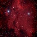 Pelikan Nebula,                                deppski