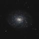 NGC 3486,                                Gary Imm