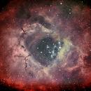 Rosette Nebula,                                Tom Marsala