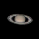 My New Saturn,                                Seal