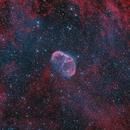 Crescent Nebula HOO,                                Tim Gillespie