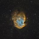NGC 2175: Monkey head,                                Glenn Diekmann