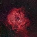 Rosette Nebula,                                Anurag Wasnik