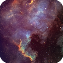 NGC 7000 Sho plus RGB Stars,                                APshooter