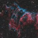 NGC 6995 The Bat,                                Mike Miller