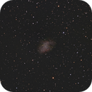 "M1 - Crab Nebula, First Light 8"" TPO RC,                                Ron"
