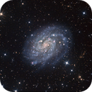 NGC 300 revisited. Two telescopes are better than one?,                                Brian Boyle