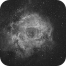 The Rosette Nebula in Hydrogen-Alpha Light,                                Dean Jacobsen