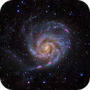 M101 The Pinwheel Galaxy,                                Greg Nelson